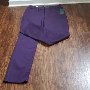 Lauren Premier Straight Curvy Pants